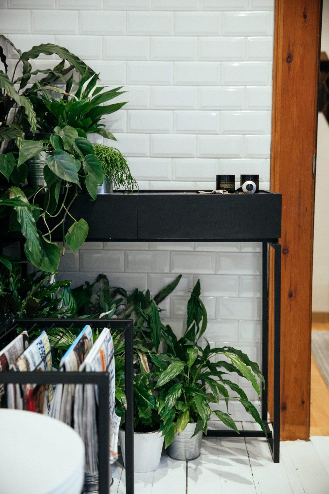 Beau Tags: Bathroom, DIALECT, Hang It, Jungle Bathroom, JUNO, Plants In Bathroom,  Serax, White Bathroom