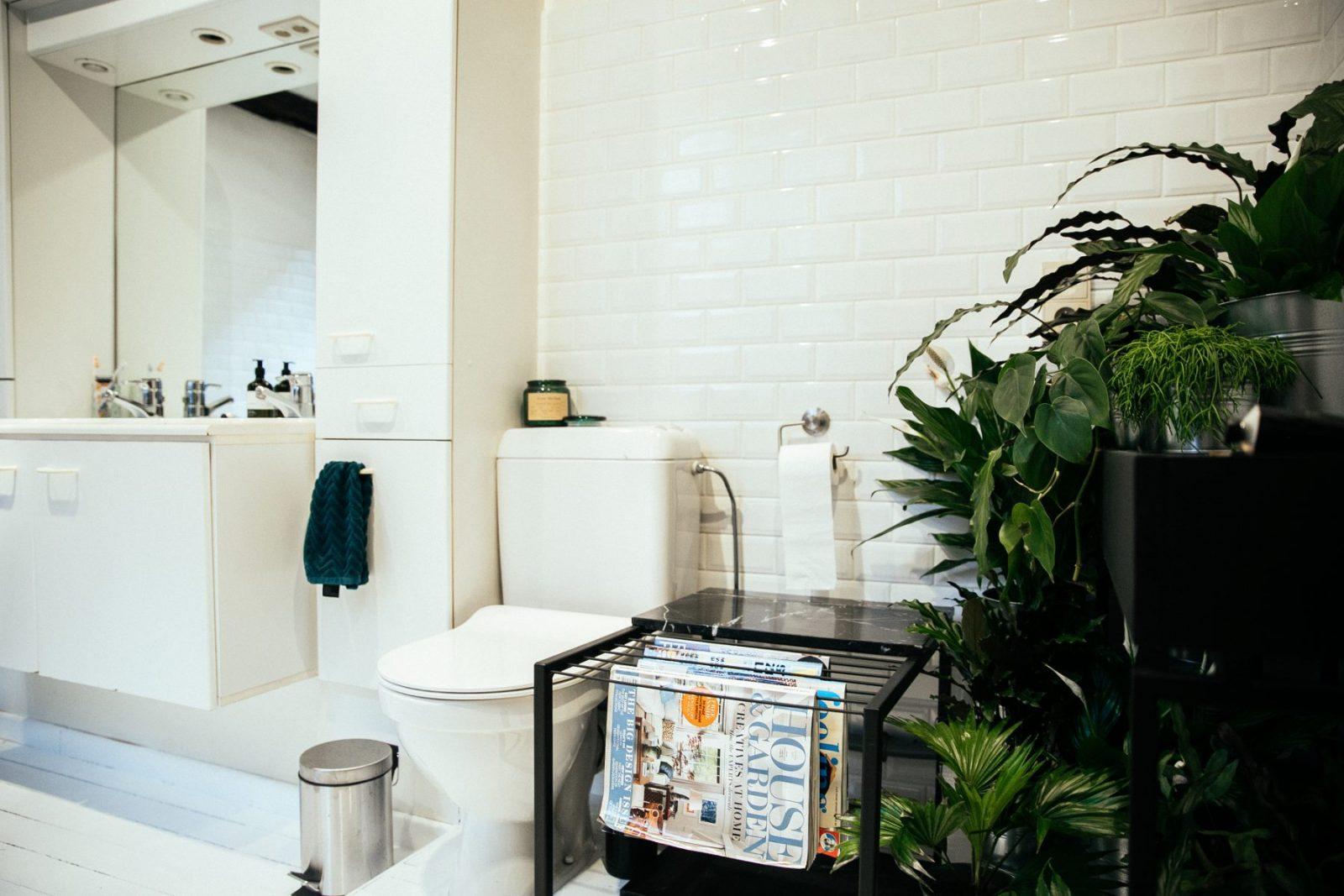 Jungle Bathroom – MattG Style