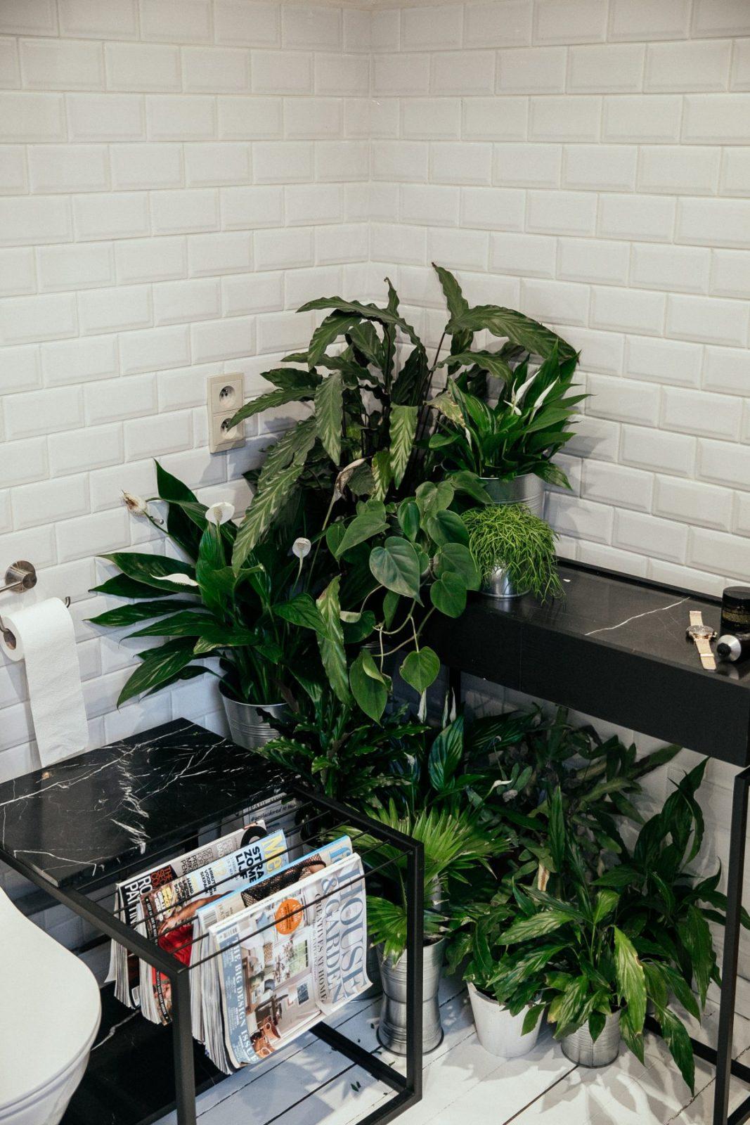 Superieur Tags: Bathroom, DIALECT, Hang It, Jungle Bathroom, JUNO, Plants In Bathroom,  Serax, White Bathroom